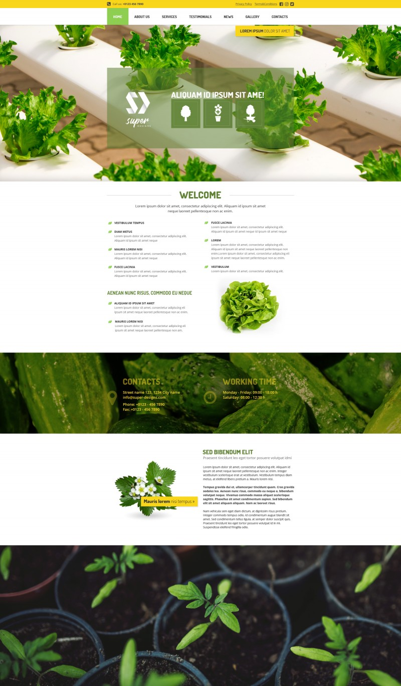 Vegetable Garden HTML template