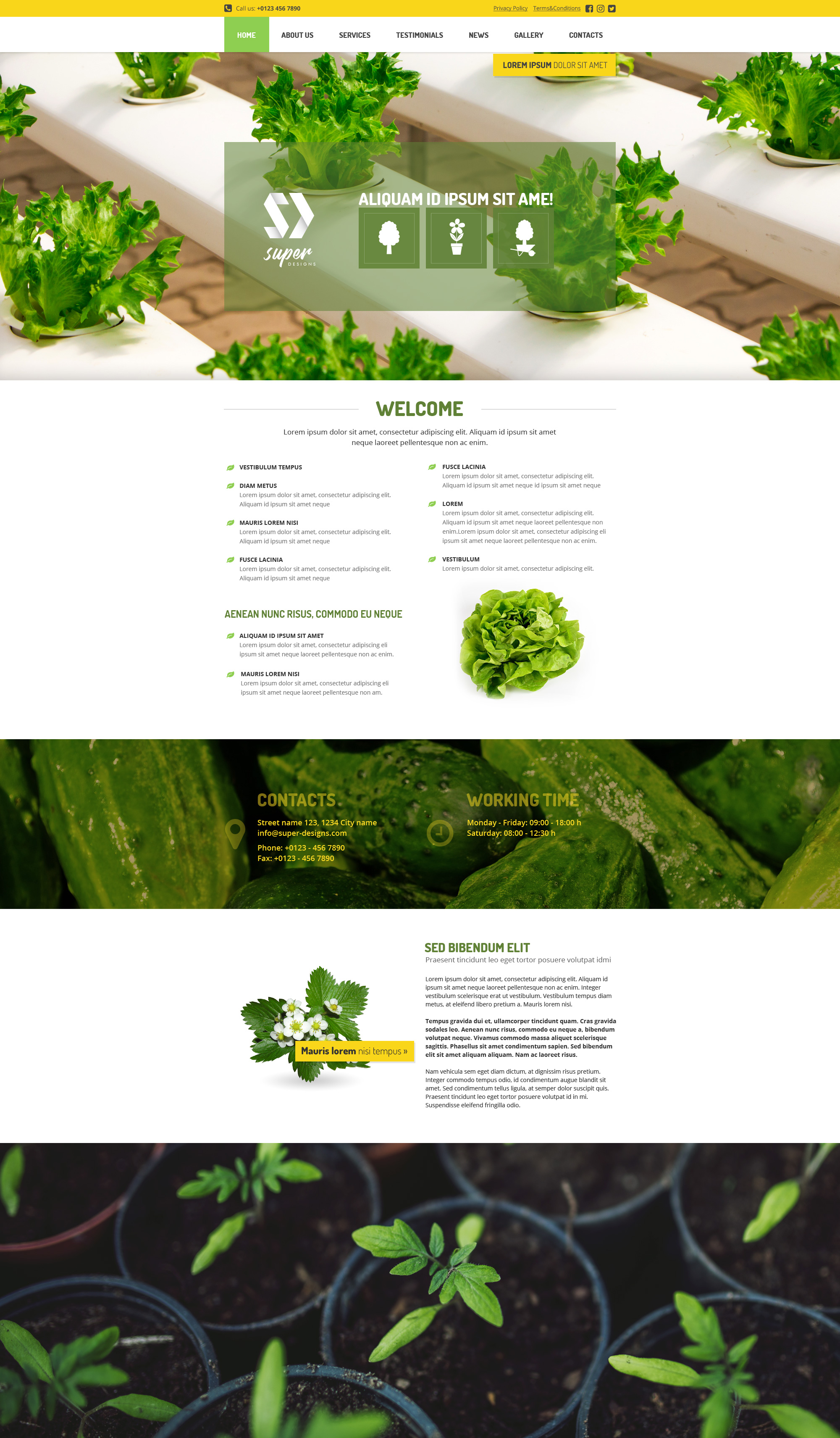 Vegetable Garden HTML template on